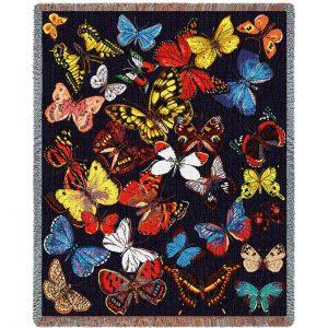 butterflies 712