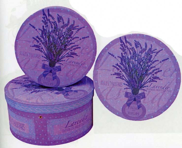 lavenda