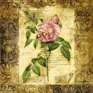 blossom elegance